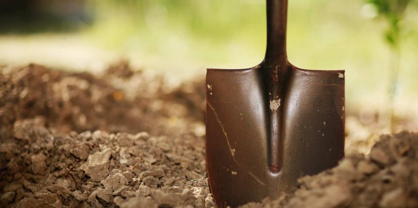 Essential Gardening Tools for a Successful Garden