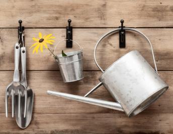 Starting your own garden – Gardening Tips